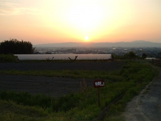 3号畑の夕景②